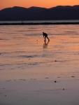 2/28/09 - walkin' on water