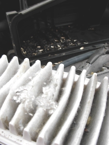 intact airfilters: SO overrated.