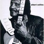 Albert Collins-Iceman