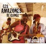 Les Amazones de Guinee